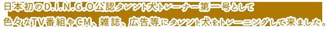 日本初のD.I.N.G.O公認タレント犬トレーナー第一号として色々なTV番組やCM、雑誌、広告等にタレント犬をトレーニングして来ました。